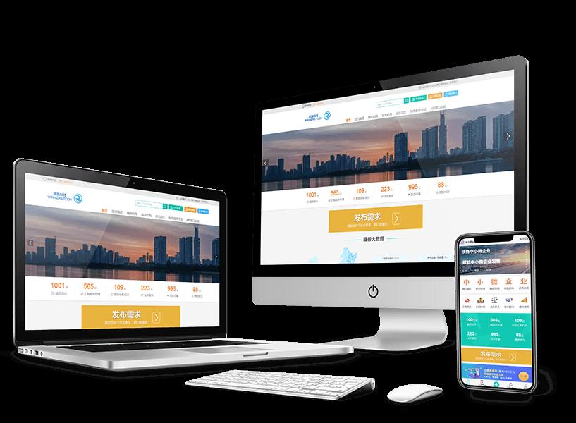 全国中小企业融资综合信用服务示范平台官网开发
